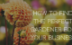 find-the-perfect-gardener