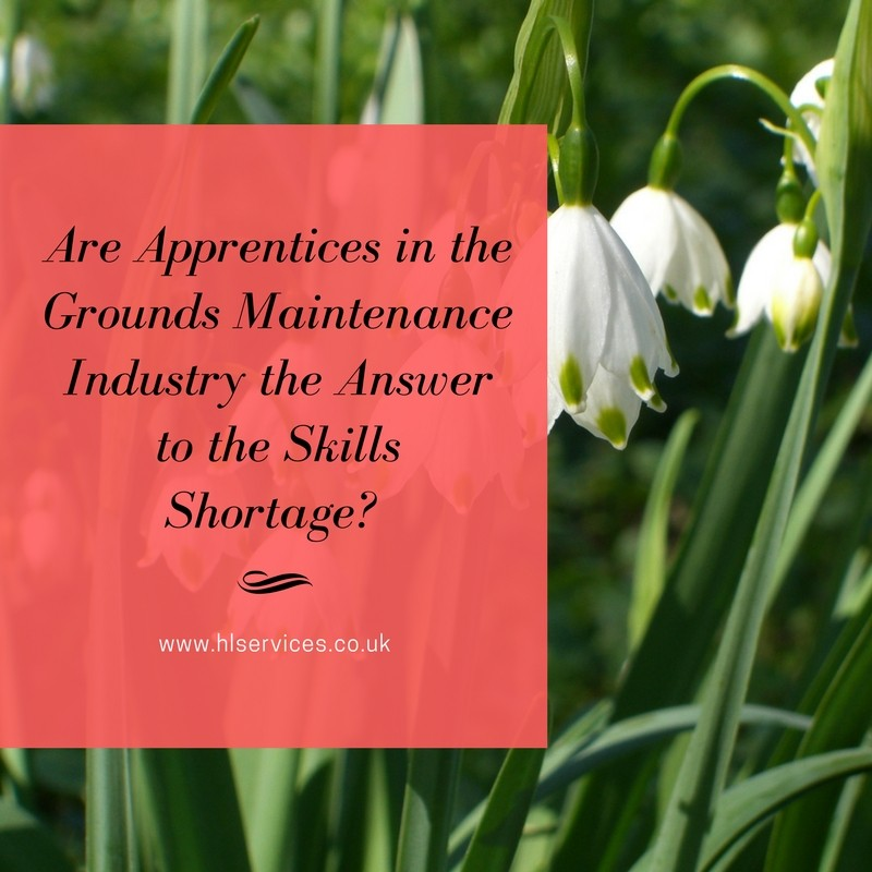 Are Apprentices in the Grounds Maintenance Industry the Answer to the Skills Shortage?
