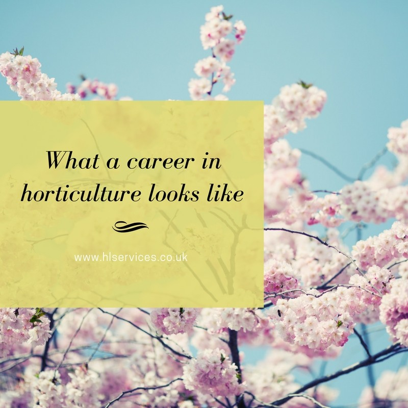 what a career in horticulture looks like