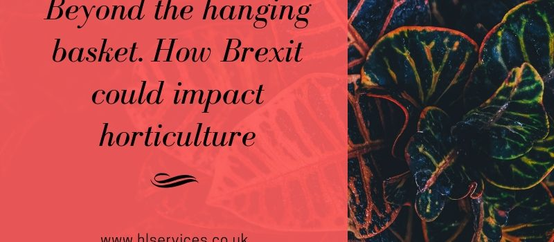 beyond the handing basket and how brexit could impact horticulture banner