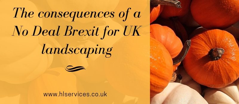 the consequences of a no deal brexit for uk landscaping banner