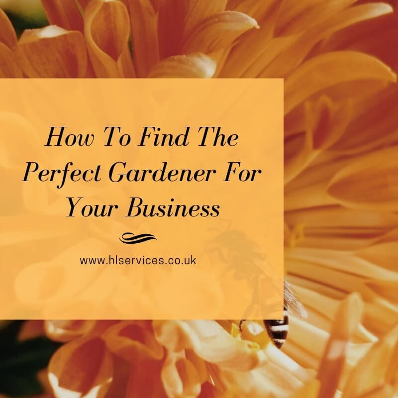 how to find the perfect gardener for you business banner